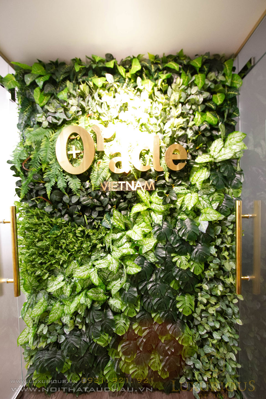 Thẩm mỹ viện Oracle Beauty Clinic Vietnam